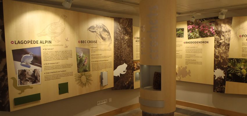 The National Park Centre of Pyrenees, museography, Saint-Lary